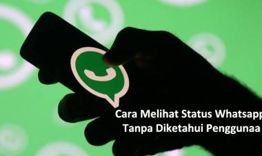 Cara Melihat Status Whatsapp Tanpa Diketahui Pengguna